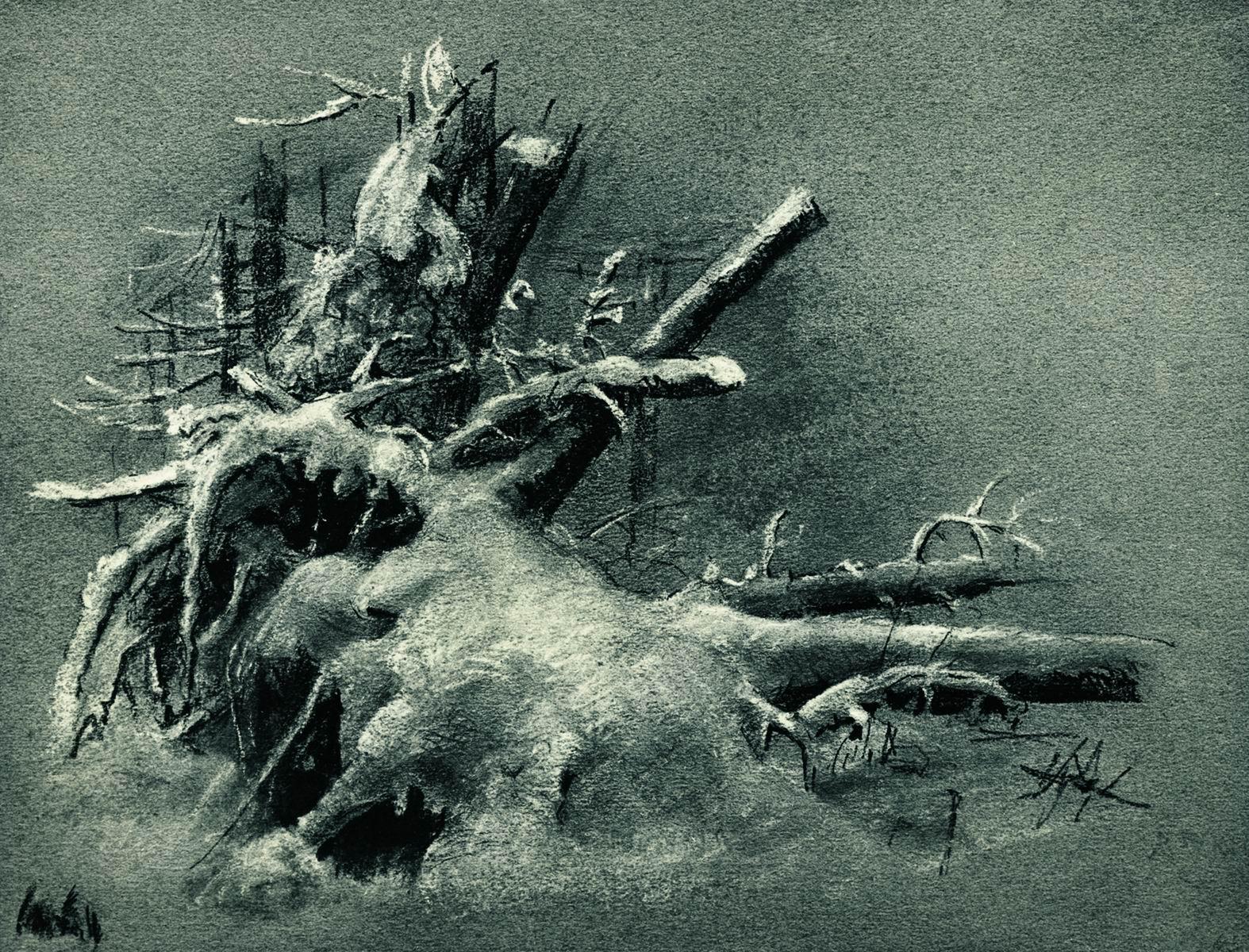 Шишкин. Выкорчеванные пни под снегом. 1890-е