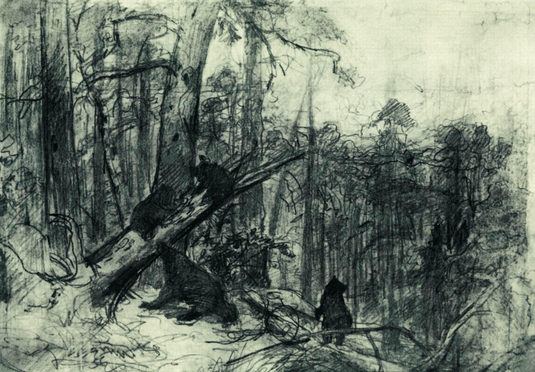 Шишкин. Утро в сосновом лесу. Конец 1880-х